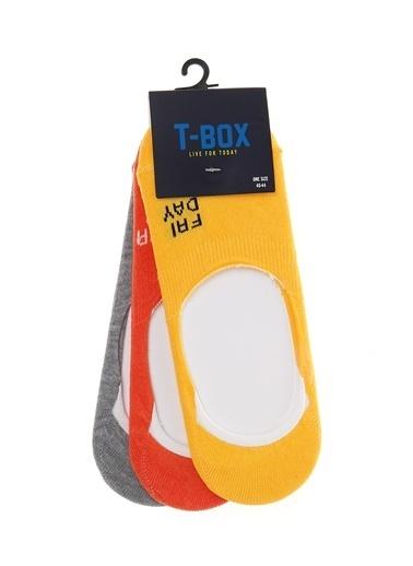 T-Box Çorap Renkli